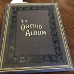 library-orchid-album