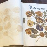 library-pressed-flowers