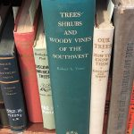 library-spines-trees-shrubs