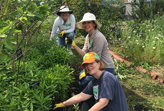 NOTG members working in the Edible Schoolyard