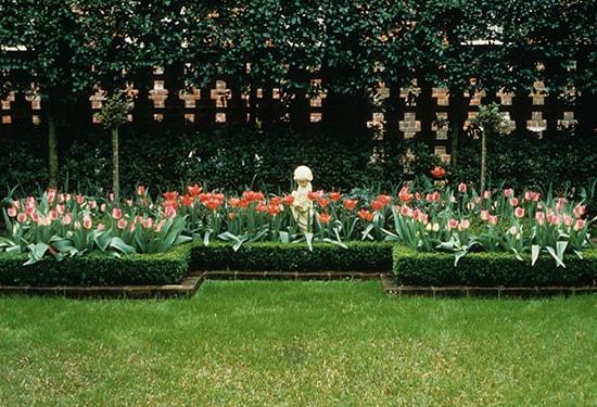 Rosemonde's Garden